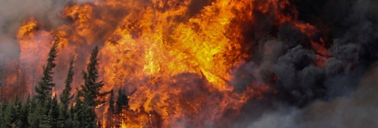 У Канаді через лісові пожежі евакуювали 37 тисяч осіб