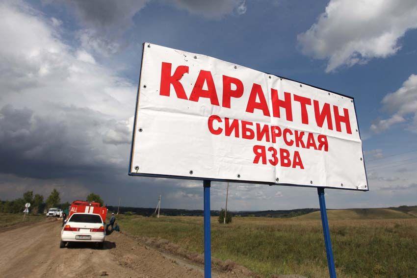 В Кыргызстане вспышка сибирской язвы / Фото nahnews.org