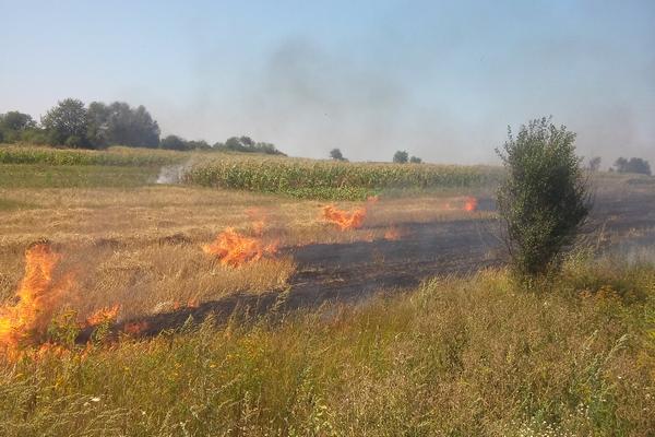 В Україні зберігається пожежна небезпека / Фото ternopil.mns.gov.ua