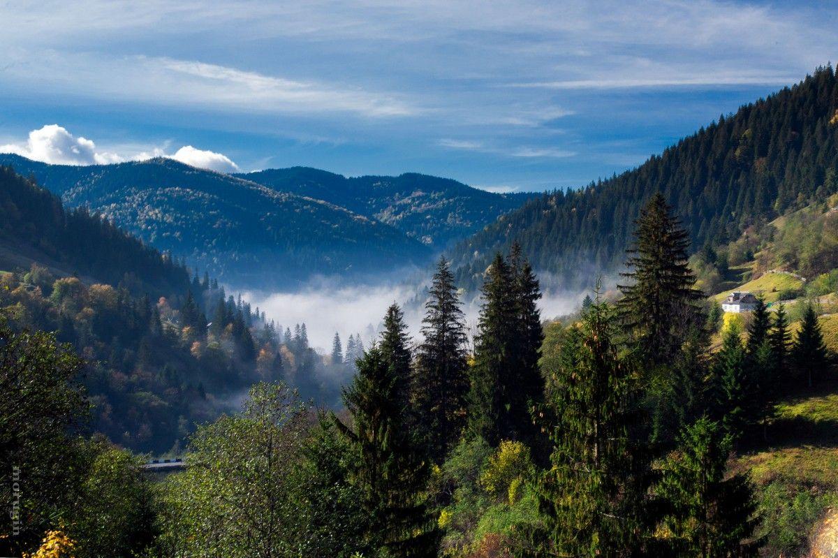 В Украине сегодня будет тепло / flickr.com Sergei Morugin