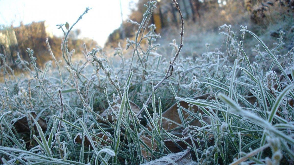 """Морозні вихідні: прикарпатців попереджають про """"мінус сім"""""""