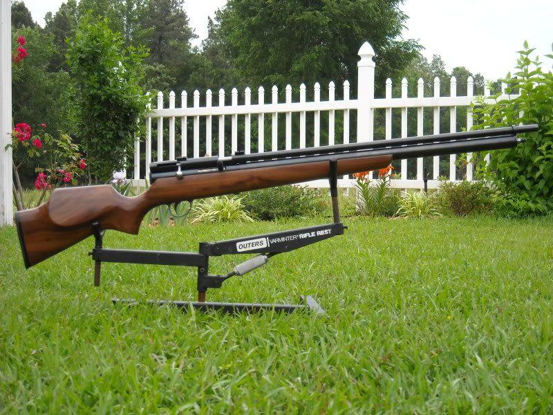Зловмисникзастрелив собаку з пневматичної гвинтівки / Фото 24smi.org