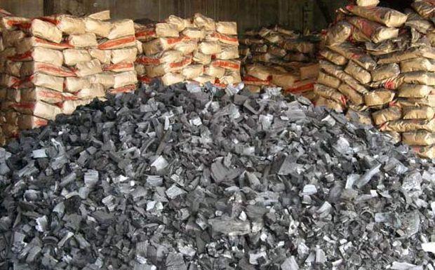 Сировина для вугілля заготовлювалась без будь-яких дозволів на землях лісового фонду / phm.gov.ua