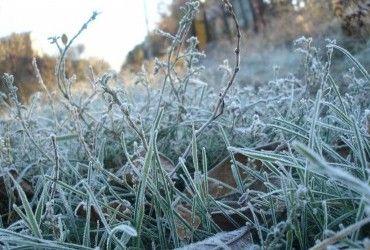 Синоптики предупредили о сильных заморозках в Украине