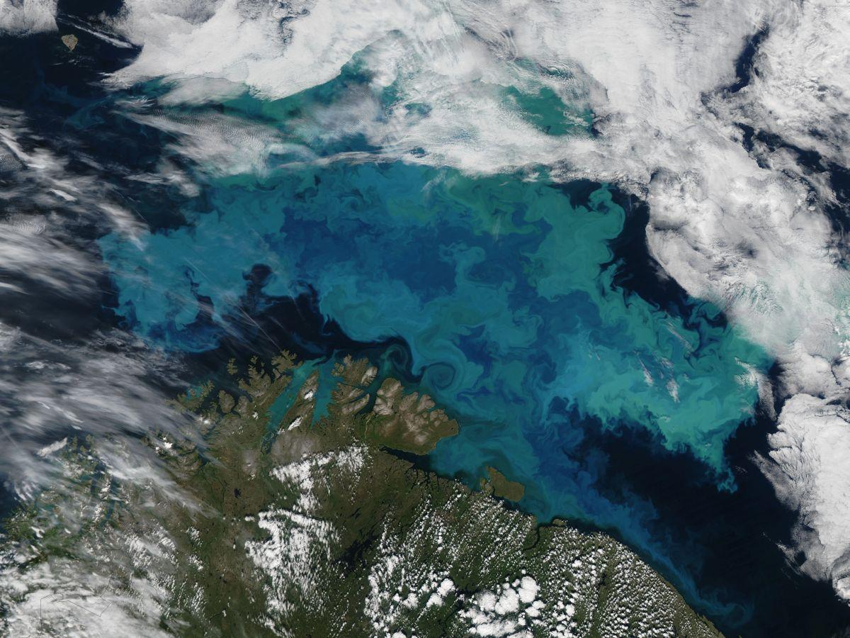 Останні 100 млн років температура океану була відносно стабільною / фото nasa's Earth Observatory