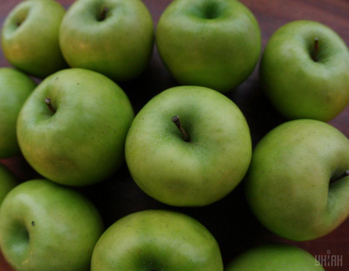 Україна вперше в історії експортувала за місяць понад 8 тисяч тонн яблук / фото УНІАН