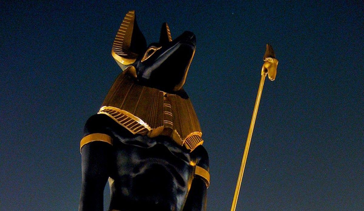 Мумии животных обнаружены под храмом египетского бога смерти Анубиса \ Фото animacity.ru