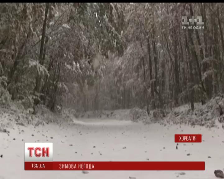 Зимова негода дісталась гірських районів Хорватії / скріншот