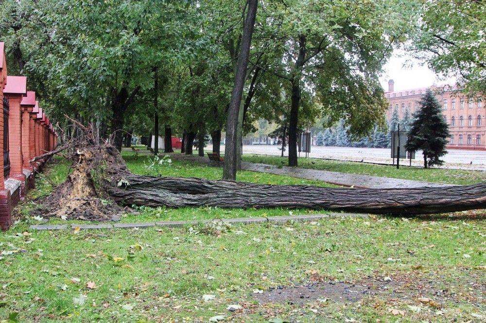 Photo from Dumskaya