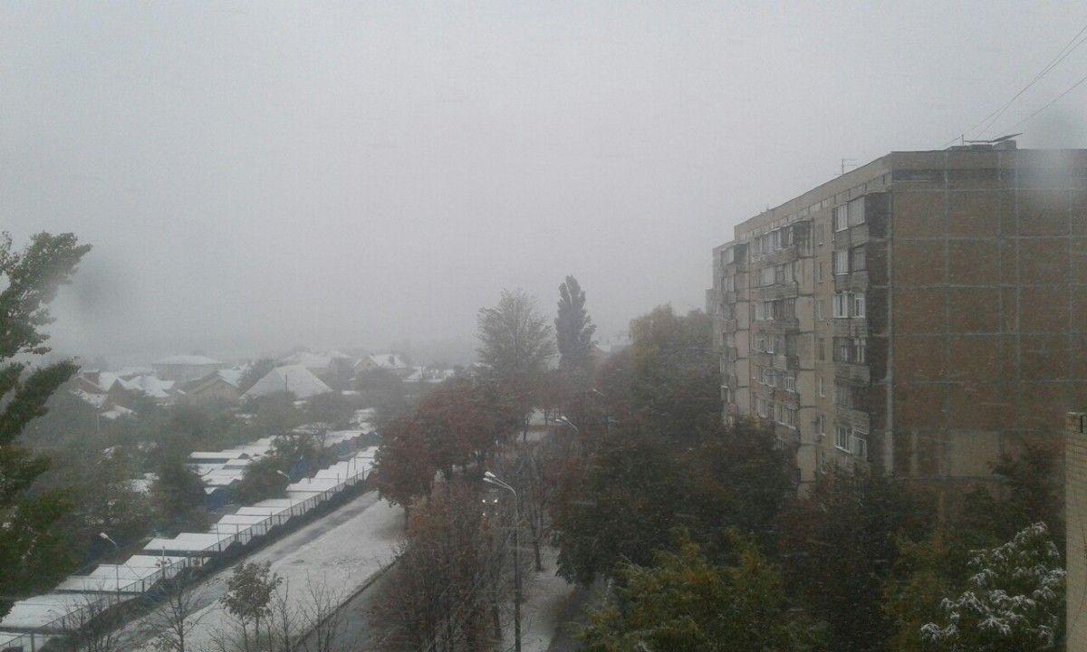vk.com / Дарина Горобець