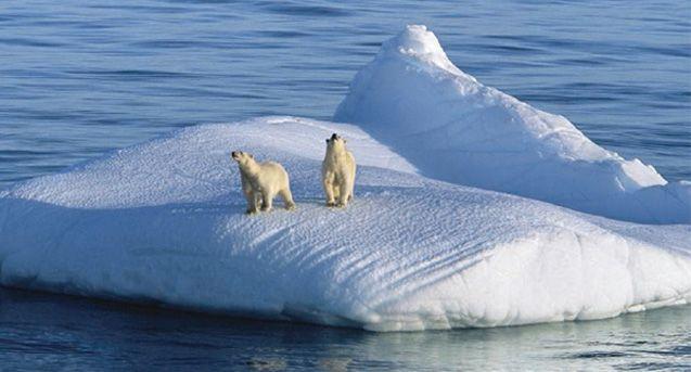 У Кабміні заявили, що  не забувають про проблеми зміни клімату / opogode.ua