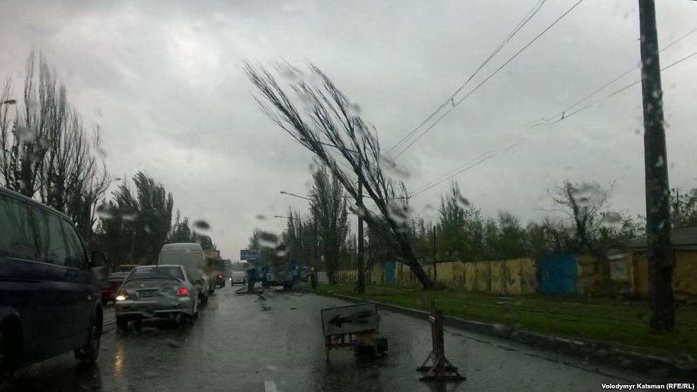 Киян попередили про сильні пориви вітру / Радио Свобода