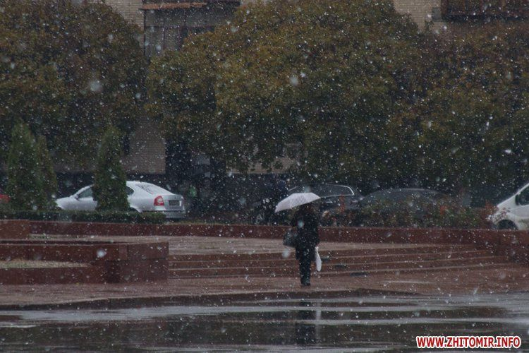 В Житомире выпал первый снег / zhitomir.info