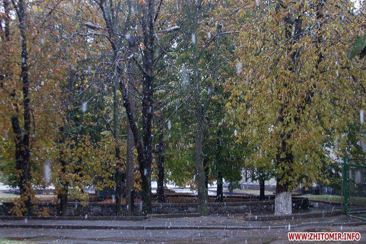 Сніг у Житомирі