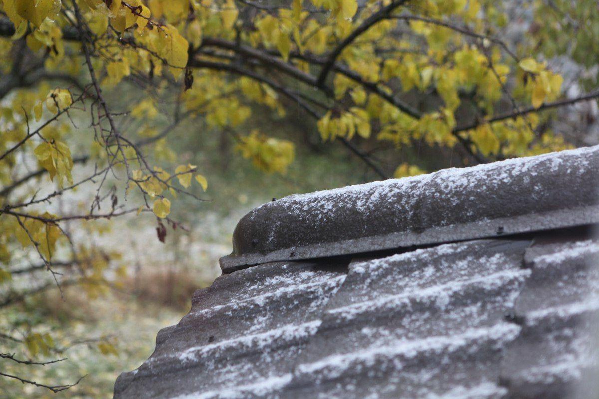 Первый в Киеве снег выпал уже в конце октября / Фото vk.com/elena_storchak