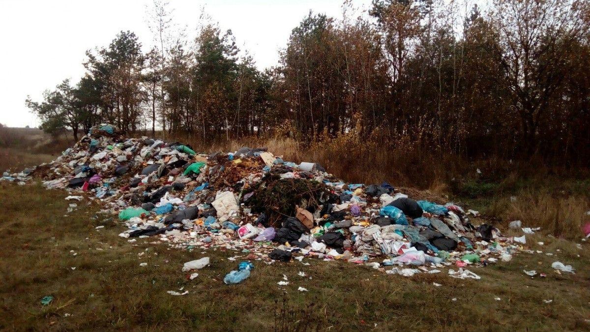 Нелегально завезенный мусор со Львова обнаружен в Олевском районе Житомирской области / facebook.com/nikolaiychuk