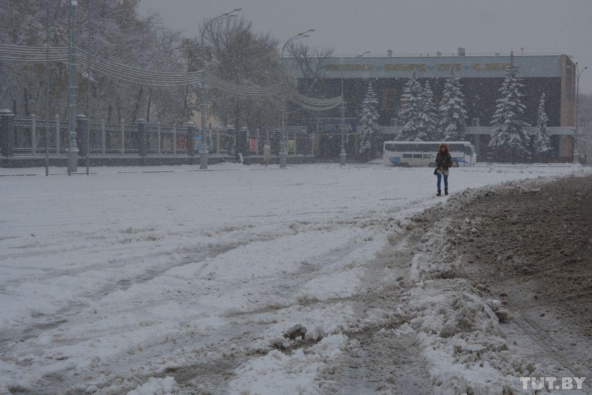 Гомельську область накрило снігом / tut.by