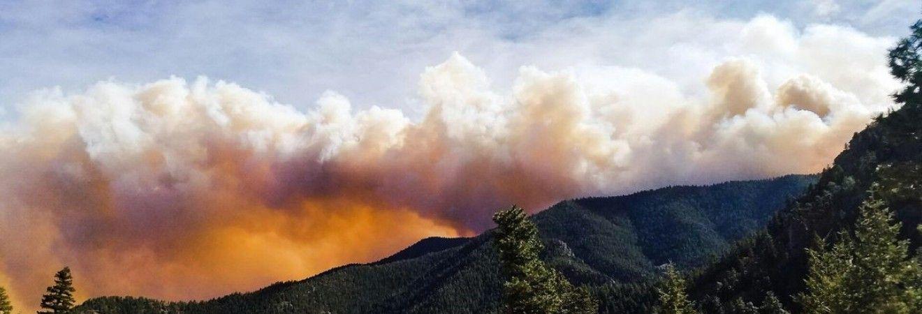 Масштабна лісова пожежа в Колорадо знищила кілька будинків