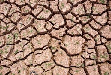 Південно-західний Китай страждає від посухи