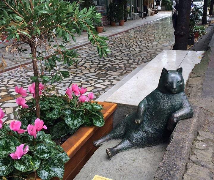 Памятник коту в Стамбуле / facebook.com/tombilikedi