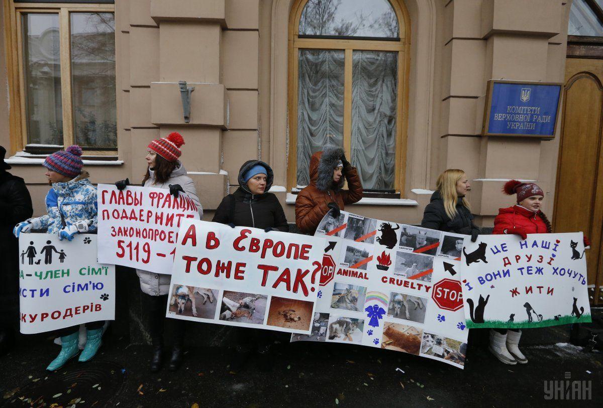 Возле здания Комитетов Рады прошла акция зоозащитников / УНИАН