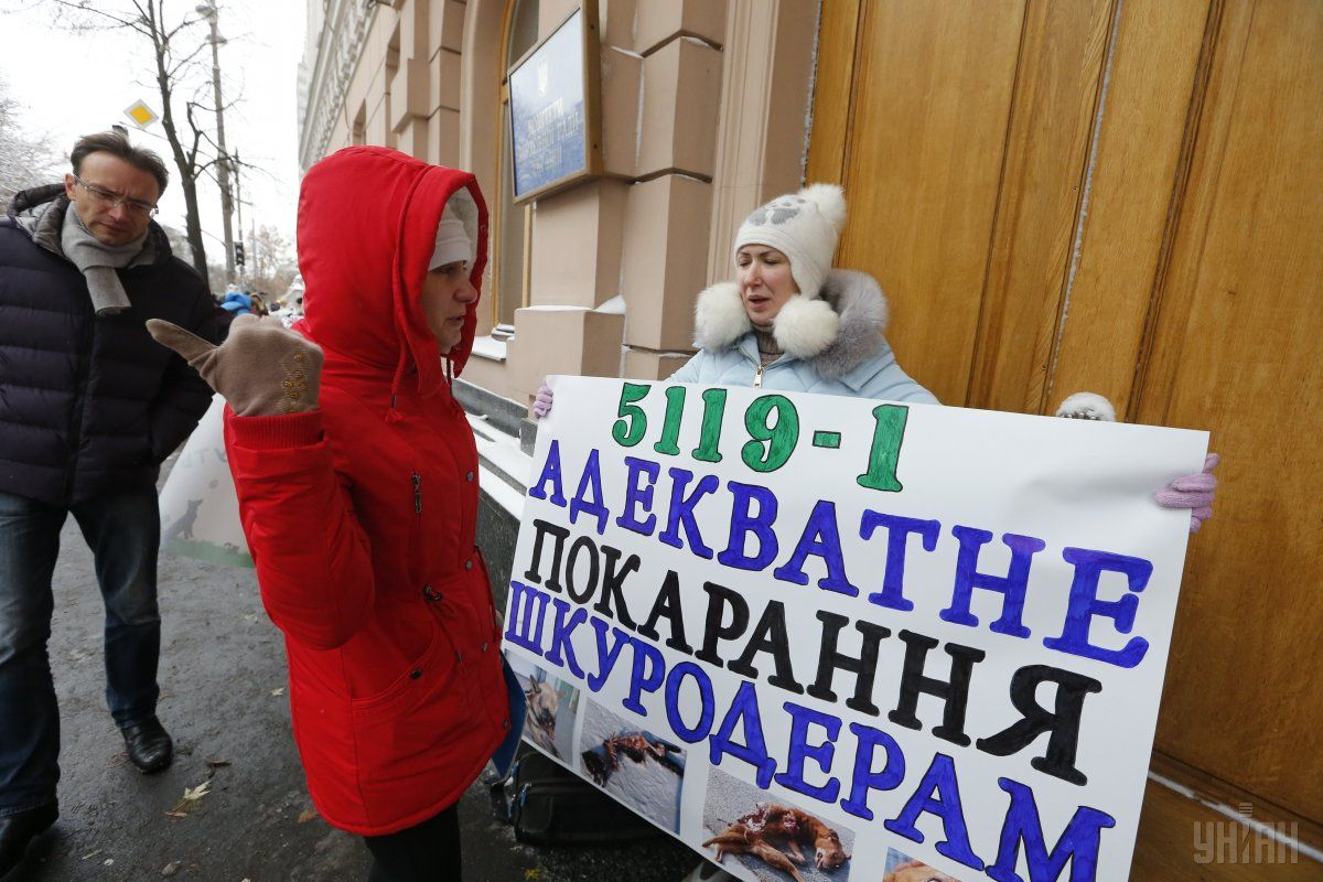 Участники акциии требуют принять законопроект №5119-1 / УНИАН