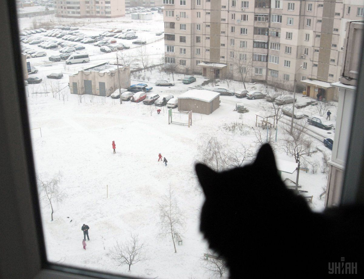 В Украине еще несколько дней продержится морозная погода / фото УНИАН