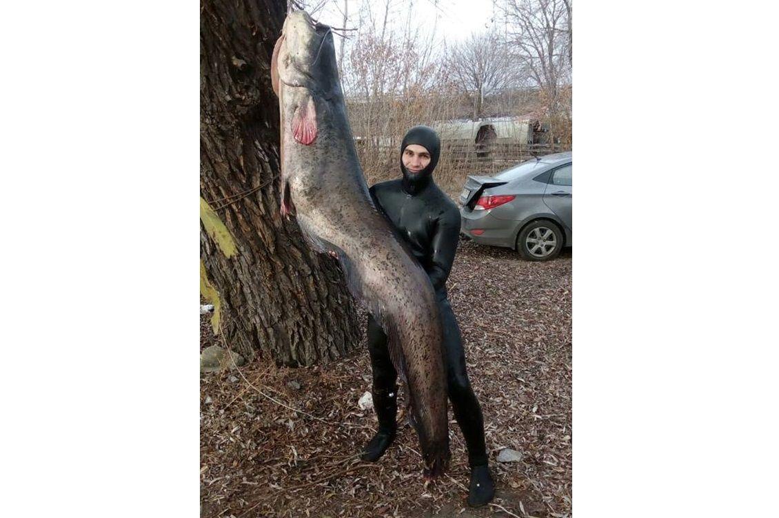 Неизвестные даже угрожали подводному охотнику / Фото: Ян Прошковский via Facebook
