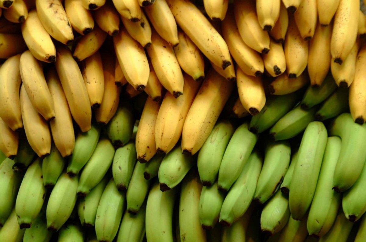 Современный мир стал слишком опасным для бананов / bgfons.com
