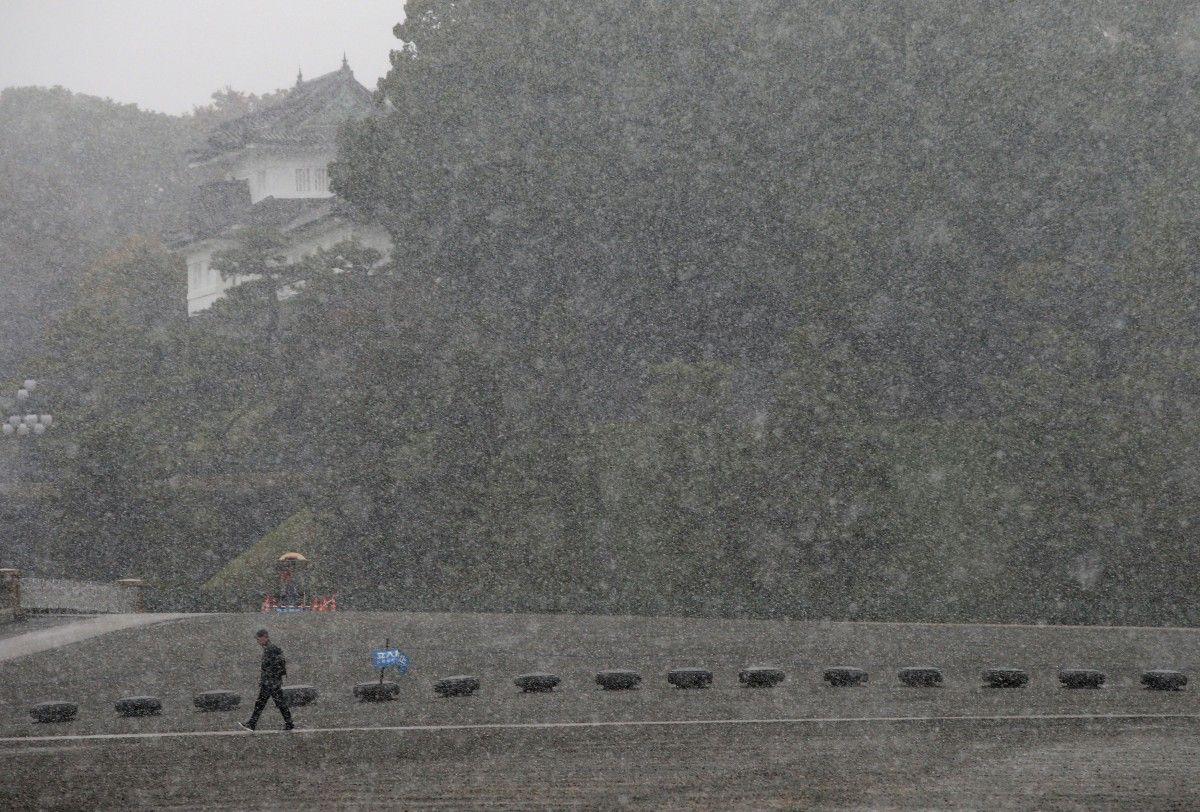 Снігопад у Токіо / Reuters