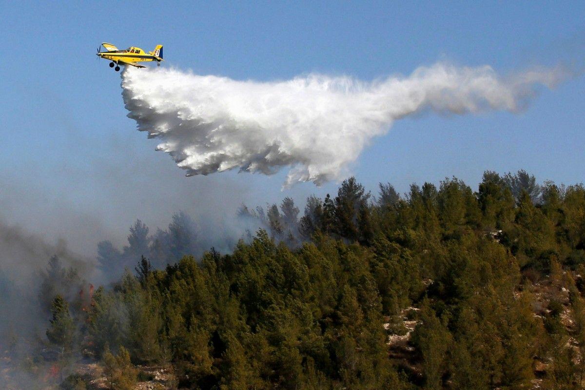 Лісова пожежа в Ізраїлі / REUTERS
