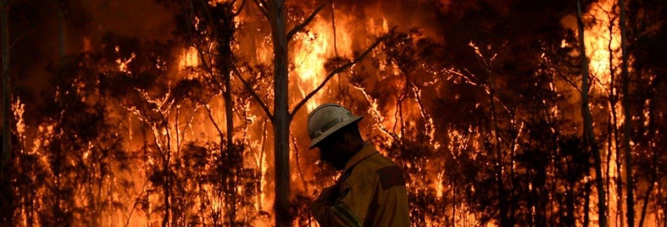 В Португалии потерпел крушение вертолет, который тушил лесные пожары