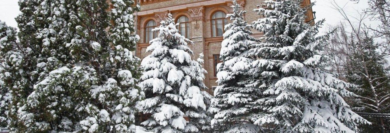В Киеве сегодня без осадков, днем температура до -3°