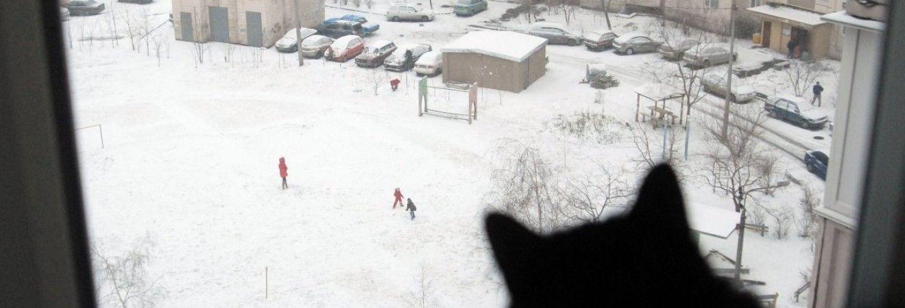 На выходных Украину будет засыпать снегом, на западе в воскресенье похолодает до -13° (карта)