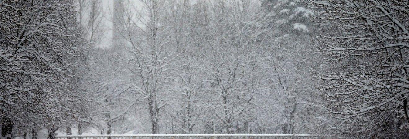 Завтра в Україні пройдуть дощі і сніг, на півдні температура до +5° (відеопрогноз)