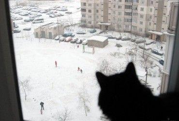 В Киеве завтра температура до -4°, без осадков