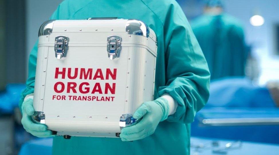 органи, трансплантація / Фото: mbc.net