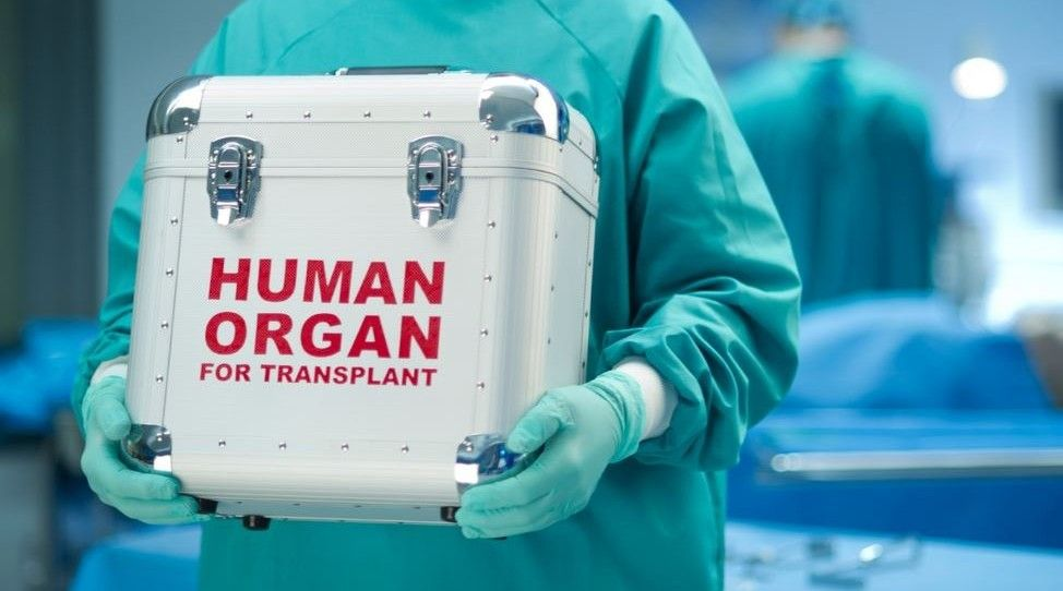Рада отложила на год запуск Единой государственной информационной системы трансплантации / Фото mbc.net