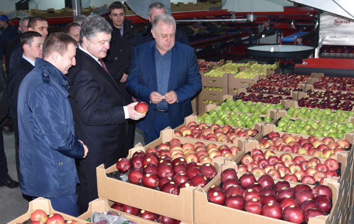 На Тернопільщині президент відвідав цех із виробництва і відбору саджанців фруктових дерев та цех, де зберігається продукція / фото УНІАН