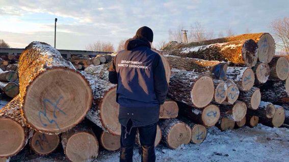 Під час обшуку виявлено понад 2 тис. колод незаконно зрубаних дерев / Фото УНІАН