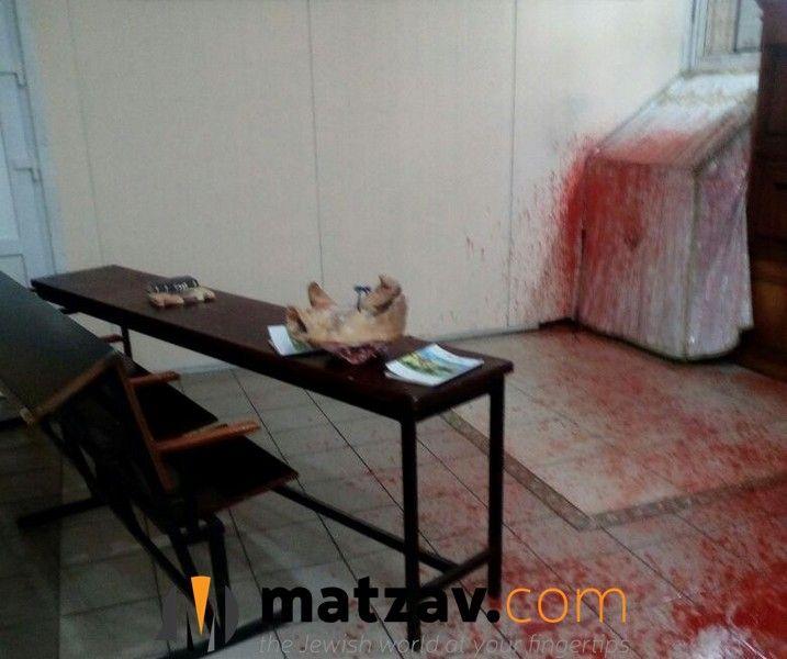 Шокуючий інцидент стався в Умані / Фото matzav.com