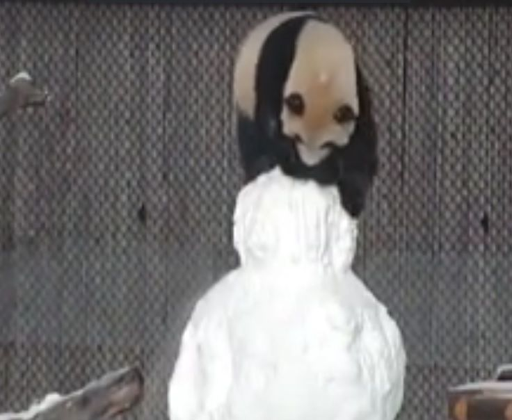 У мережі оприлюднили кумедне відео із пандою / Скріншот