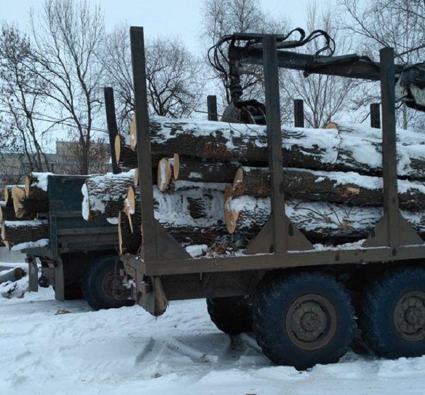На Харьковщине местные жители перевозили незаконно вырублены дубы / hk.npu.gov.ua