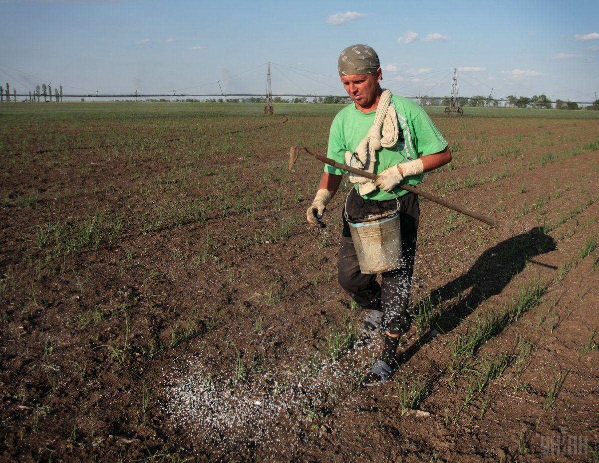Українські аграрії вже закупили необхідну кількість мінеральних добрив / фото УНІАН