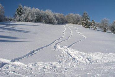 У Карпатах через снігопади та хуртовини зберігається сніголавинна небезпека 3 рівня