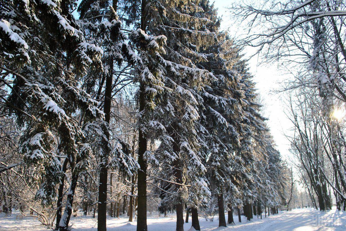 В Україні знову похолодає / Фото УНІАН