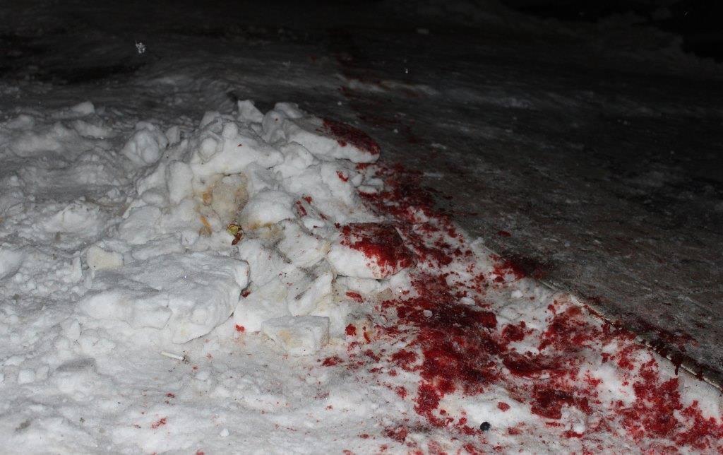 На Житомирщине произошла перестрелка / facebook.com/nikolaiychuk