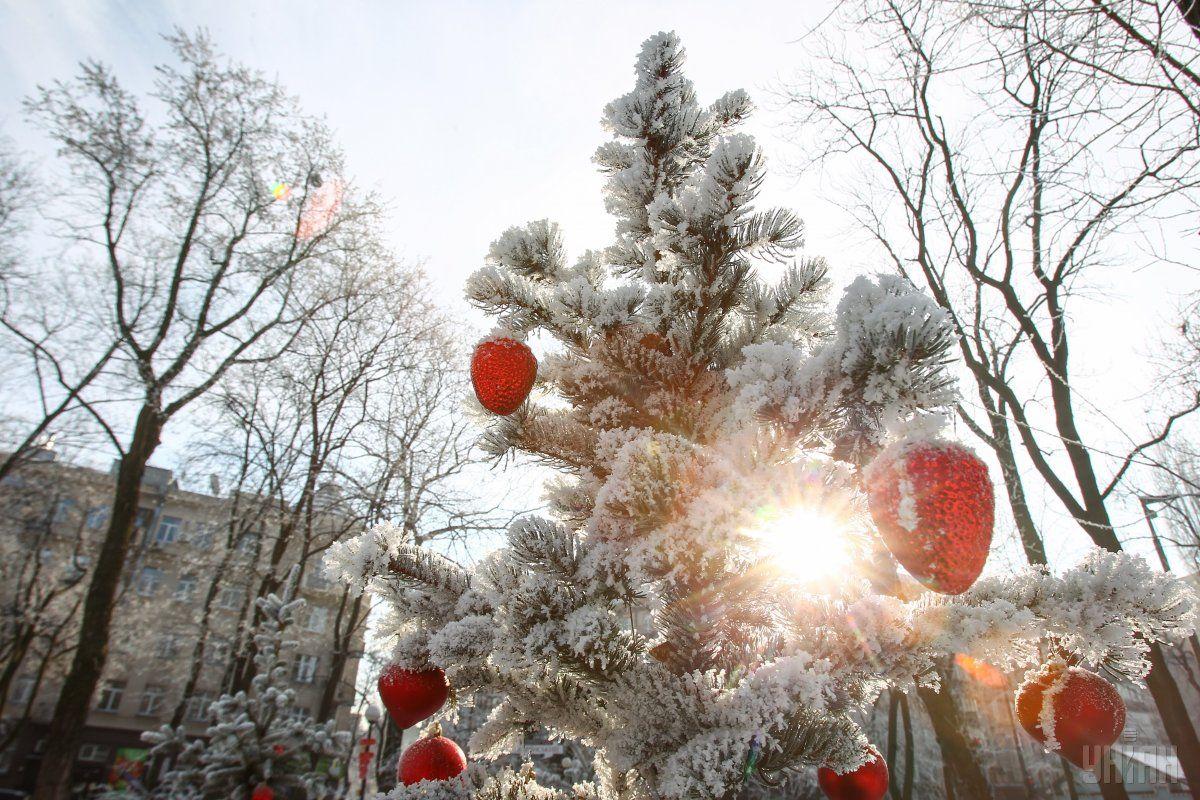 Снега на Новый год в Украине не будет / Фото УНИАН