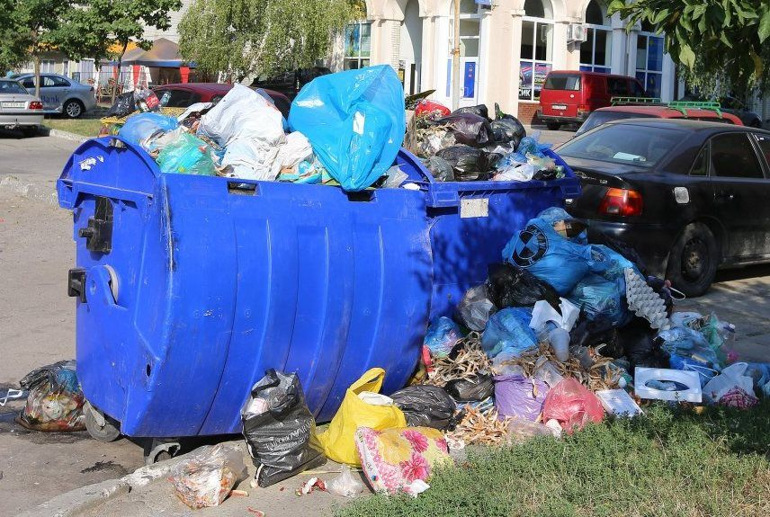 Садовый: Потенциальная экологическая кризис может получить международный характер / Фото УНИАН