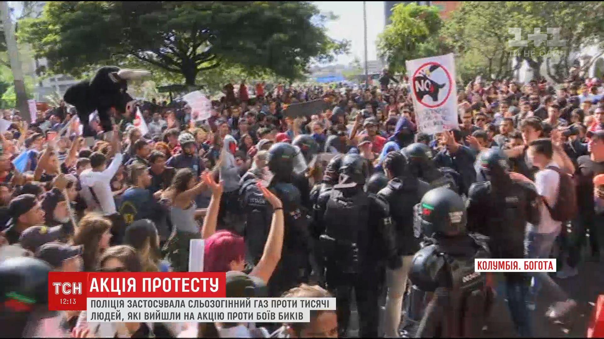 В Колумбии протесты защитников животных закончились кровавыми столкновениями с полицией /